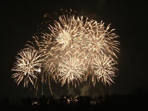 平成26年(2014年) (川崎)市制記念多摩川花火大会の画像