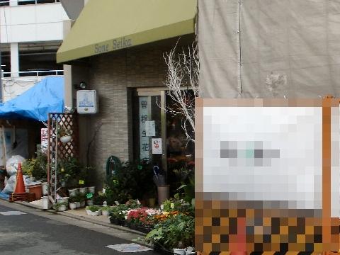 曽根生花店