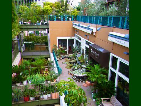 PROTOLEAF(プロトリーフ) ガーデンアイランド玉川店の画像