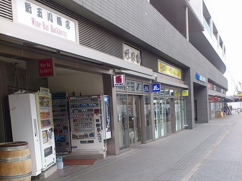新玉川酒店
